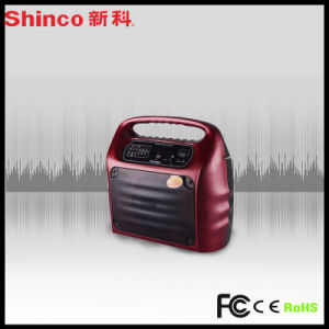 Professional Loud Speaker for Indoor and Outdoor USB FM Bluetooth Function pictures & photos