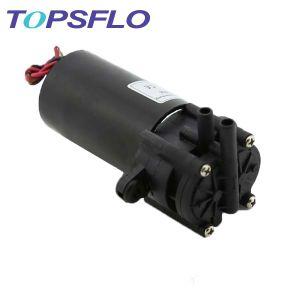 Topsflo DC Gear Pump / Micro Gear Pump Tg-02 pictures & photos