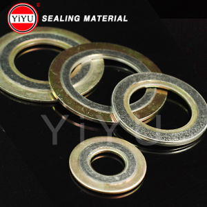 Graphite Spiral Wound Gasket pictures & photos