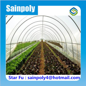 China Best Quality Tunnel Greenhouse for Hami Melon pictures & photos