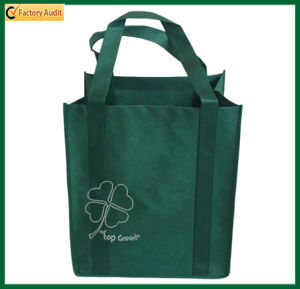 Fashional PP Shopping Bag Nonwoven Tote Bags (TP-SP192) pictures & photos