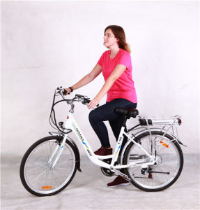 18 Inch Hub Motor for Ebike pictures & photos