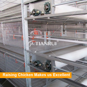 Tianrui Design Chicken Shed House Automatic Poultry Farm Equipment/Battery Chicken Broiler Cage pictures & photos