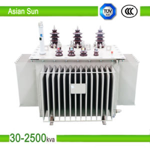 10kv 30kVA ~ 1600kVA Series Oil Immersed Power Distribution Transformer pictures & photos