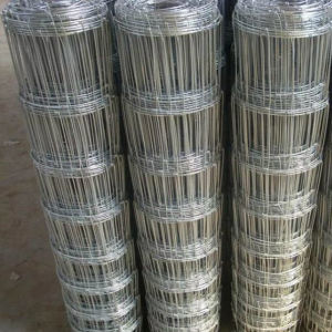 Mesh Fence for Sheep/ 1.5m Galvanized Same Hole Sheep Fence pictures & photos