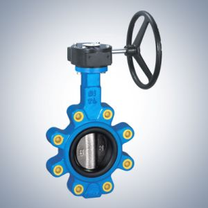 Butterfly Valve with Worm Gear pictures & photos