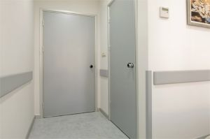 Wall Protection pictures & photos