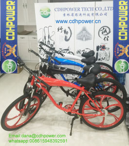 80cc Motorized Bicycle pictures & photos