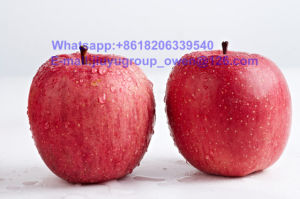 Yantai Origin New Crop FUJI Apple Food Grade pictures & photos