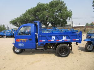Tri-Wheel Truck with Diesel Engine pictures & photos