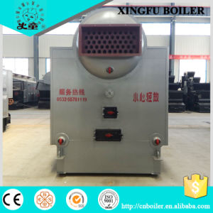 Dzl Series Chain Grate Coal Fired Steam Boiler pictures & photos