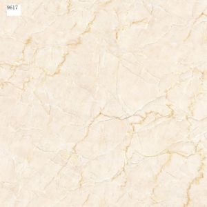 Floor Tile of Porcelain Water Absorption<0.5% pictures & photos