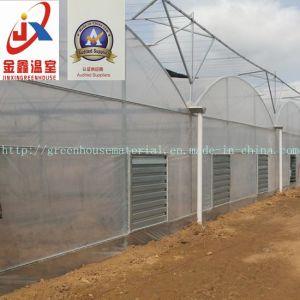 Multi Span Film Green House pictures & photos