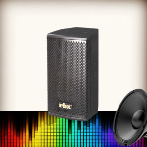 K6 Single 6.5 Inch 2-Way Full Range 100W Portable Speaker