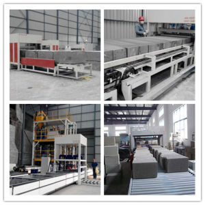 Tianyi Fireproof Thermal Insulation Brick Machine Foam Concrete Plant pictures & photos
