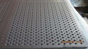 Decorative Perforated Metal Panel pictures & photos