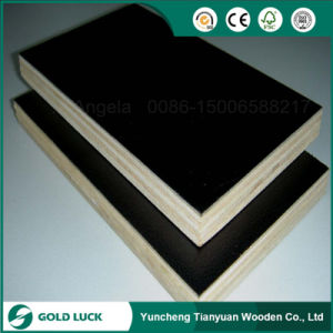 18mm Thick Black Film Marine Plywood pictures & photos