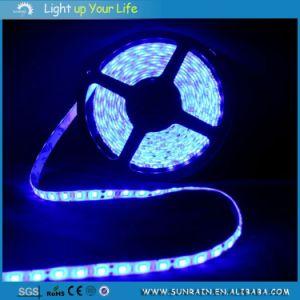 LED Strip Light 12V Indooruse pictures & photos