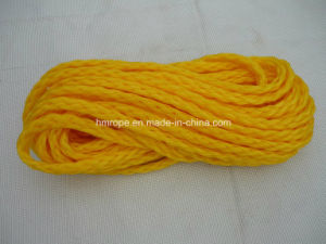 Hollow Braid Polypropylene Ski Rope South Africa Market pictures & photos