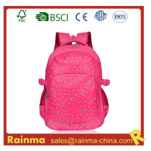 School Backpack with Nice Design pictures & photos