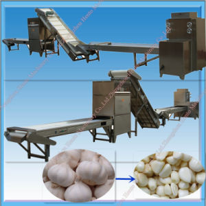 Whole Line Automatic Electric Garlic Peeler pictures & photos