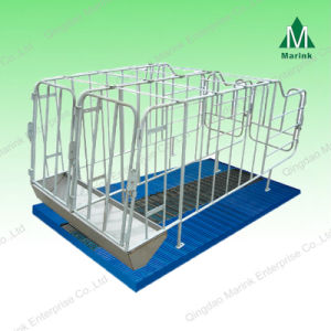Hot Galvanized Farrowing Pig Crate/Sow Cage pictures & photos