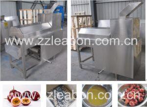 New Design Mango Pulp Machine Mango Juice Making Machine pictures & photos