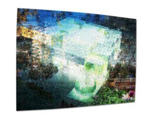 Intelligent Plastic 3D Cat Puzzle pictures & photos