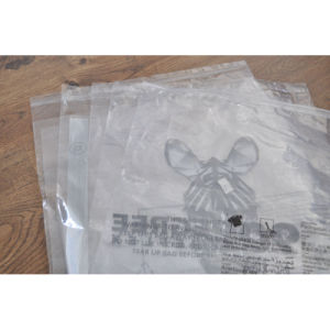 PVC Package Bag for Shopping/Boxes/Garment pictures & photos