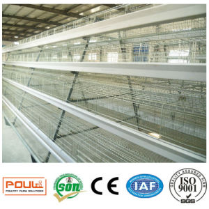 Poultry Farm Equipment / Layer Chicken Cages System pictures & photos