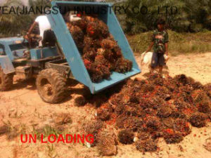 China Supplier Agricultural Palm Oil Tractor Wea18 pictures & photos