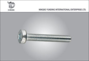 China Fastener Manufacturer Stainless Steel Self-Tapping Screw pictures & photos