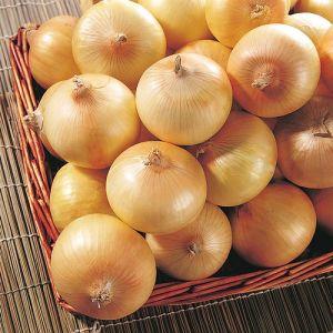 4-6cm Yellow Onion pictures & photos