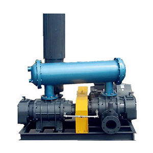 Two-Stage High Pressure Roots Blower for Sewage Treatment