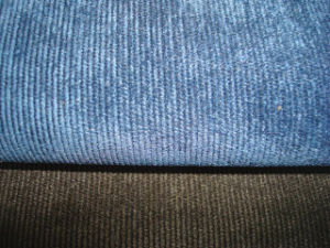 Canvas Twill Corduroy pictures & photos