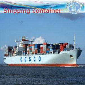 Sea Shipping to Puerto Cabello, La Guaira, Rio Haina pictures & photos
