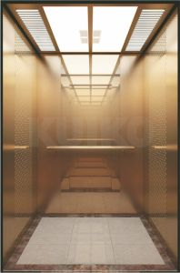 Safety Passenger Lift Business Machine Room Elevators pictures & photos