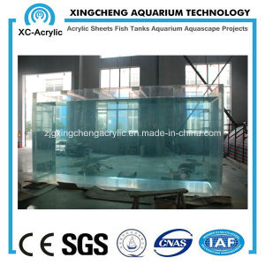 Factory Direct Sales Acrylic Fish Tank pictures & photos