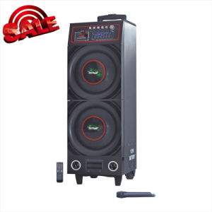 """Stage Speaker Double 10"""" Bluetooth Battery Speaker 6100t pictures & photos"""