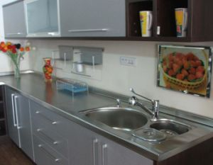 Ritz Customized Stainless Steel Kitchen Cabinet for Home/School/Hostipal pictures & photos