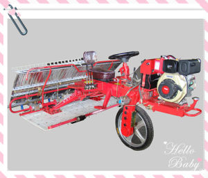 Weitai Ringding Type Rice Transplanter 2z-10238 Type From The Direct Factory pictures & photos