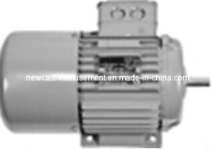 Bowling Products 99-040116-002 Distributor Motor Brunswick Bowling Parts pictures & photos