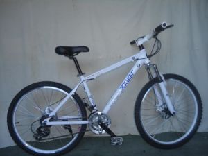 Competitive Price Adult and Youth Mountain Bike (FP-MTB-ST025) pictures & photos