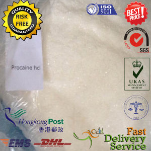 99% Purity Highest Quality Pharmaceutical Grade Procaine HCl Procaine Hydrochloride