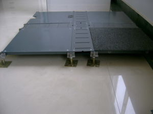 Raised Floor (SV300070)