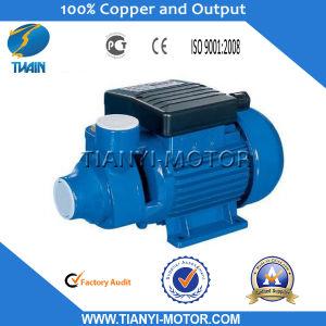 Idb 0.75HP Water Motor Pump Price