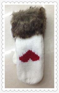 Warm Fashion Knitted Gloves - Wf004