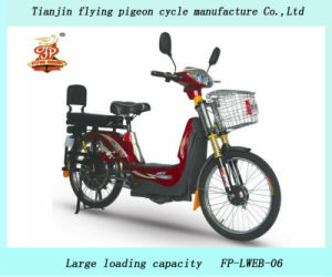 Durable E-Bikes Heavy Duty Electric Bicycles (FP-EB-004) pictures & photos