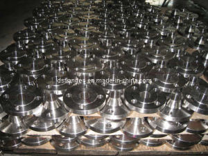 ASTM SA/A182 F316L Flanges pictures & photos