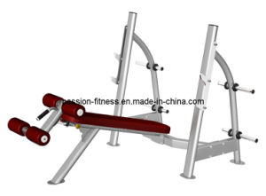 Olympic Decline Bench Free Weight Commercial Fitness/Gym Equipment with SGS